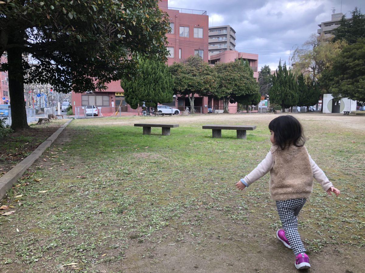 公園内をお散歩