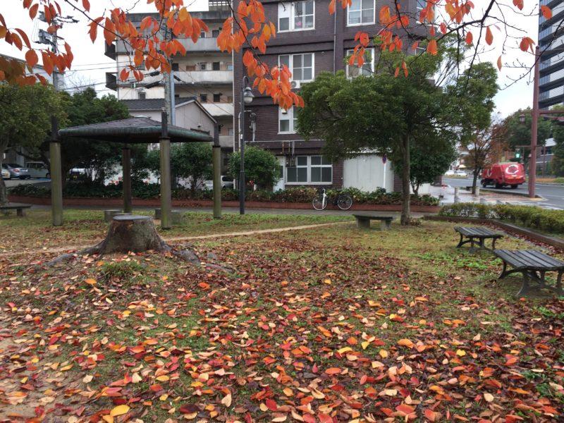 ときわ公園05