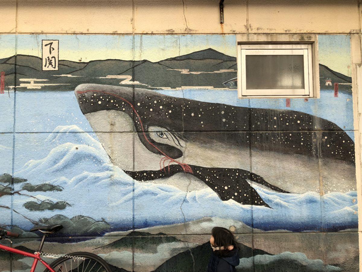 鯨アップ2
