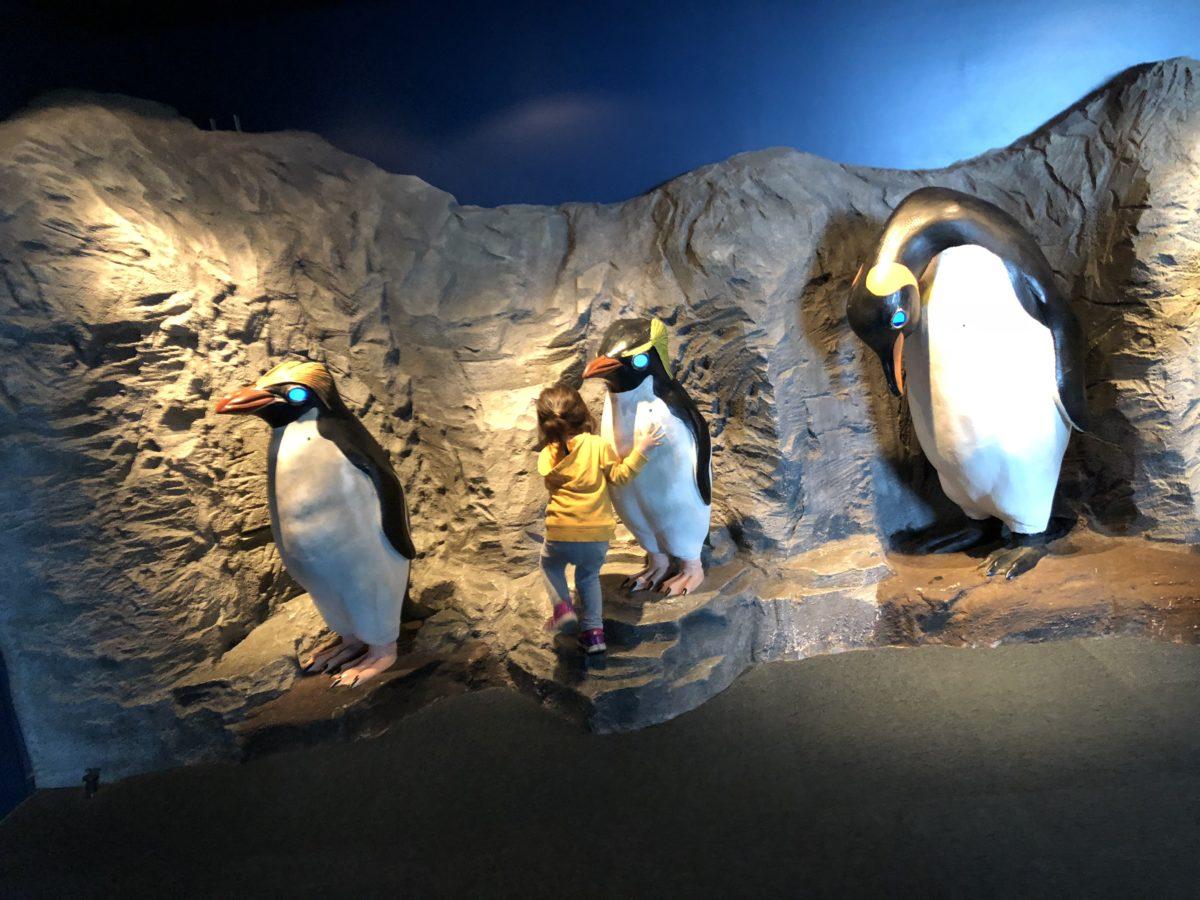ペンギンオブジェ